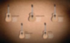 bent twig guitars specs