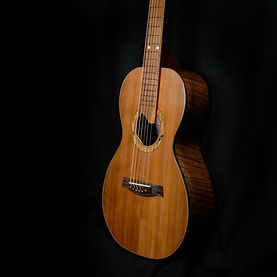 one of kind parlor guitar