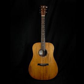 custom acoutic guitar
