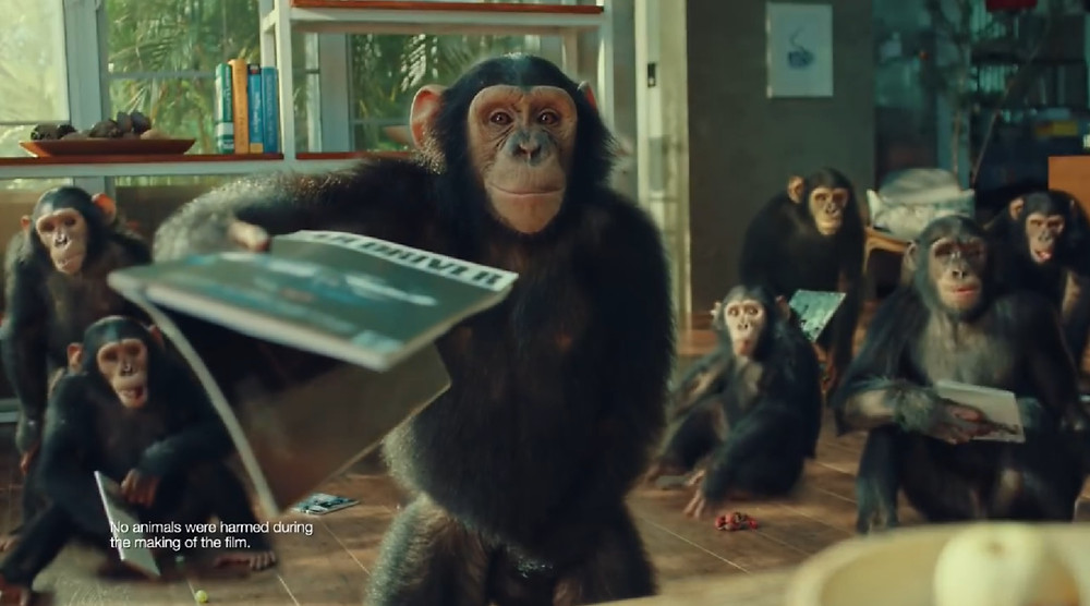 "As Bullet serves as a co-production for an oversea production, this very production most challenge were the cute casts, yet unpredictable. Nevertheless, the full team support, chimp trainers and directors managed to project this commercial out amazingly. Thanks to the mischievous chimps for the cooperative acts. ""Monkey Business"" is not never too hard to handle."