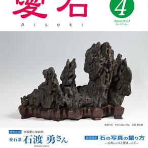 変わらない美しさ〜「愛石」4月号(2021年)をソファで読む