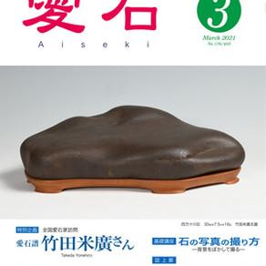 北海道はまだ冬〜「愛石」3月号(2021年)を居間で読む