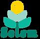 Logotipo Instituto Selem