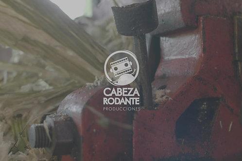 VD0195 - CAÑA DE AZUCAR MOLIDA