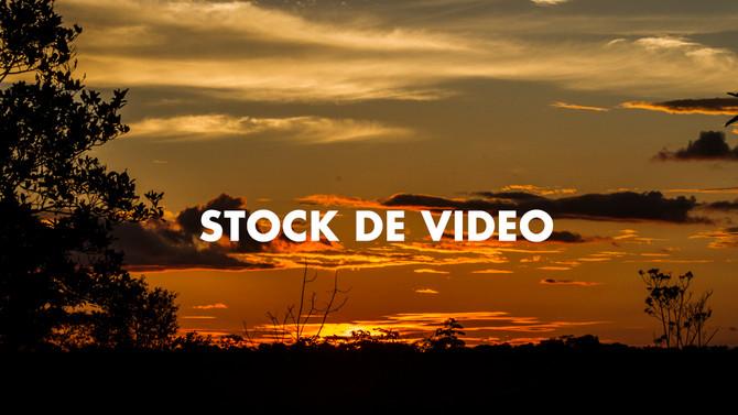 Cabeza Stock una nueva solución para tus contenidos
