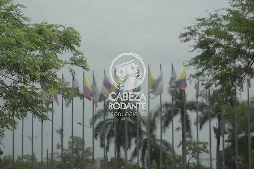 VD0299 - ARBOLES Y BANDERAS