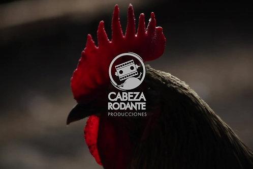 VD0138 - CRESTA DE GALLO
