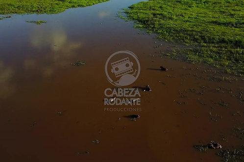 DR043 LLANO - CASANARE