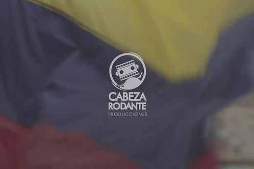 VD0250 - BANDERA DE COLOMBIA