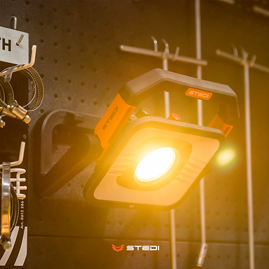 STEDI T3000 LED Area Light
