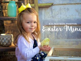 Easter Mini Sessions!