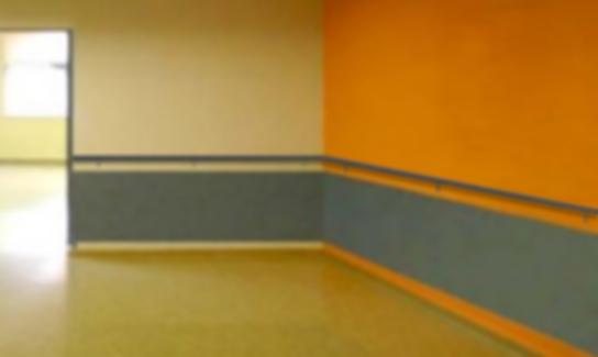 revestimientos, protección mural, b-s1,d0, revestimientos hospital, protección paredes, revestimientos b-s1,d0, revestimientos residencias, b-s1,d0, revestimientos uso hospitalario, revestimientos policarbonato, policarbonato b-s1,d0, bandas protección