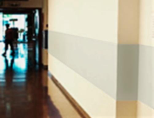 Carboimpact, revestimientos Policarbonato b-s1,d0, la alternativa al HPL, REVESTIMIENTOS BS1D0, protección mural, Revestimientos de policarbonato bs1d0 para la protección mural, la alternativa al HPL, revestimientos a prueba de golpes, carboprotec