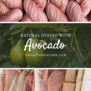 Natural Dyeing With Avocado