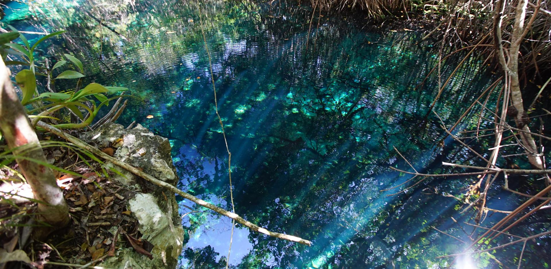 Sistema Ox Bel Ha, Cenote Stilt