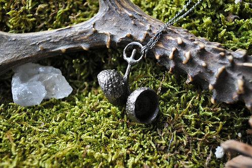 Les empreintes botaniques - Cupules de glands, cuivre, argent