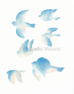blue1-tate-ss.jpg