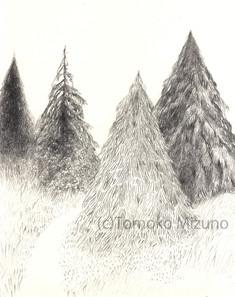 tree-path-ss.jpg