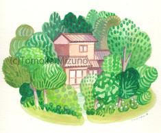 forest-house-ss.jpg