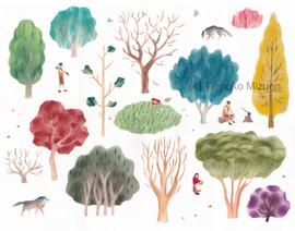 woods1-ss.jpg