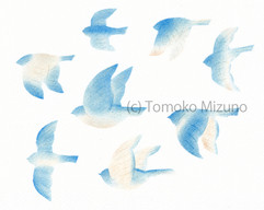 blue2-yoko-ss.jpg