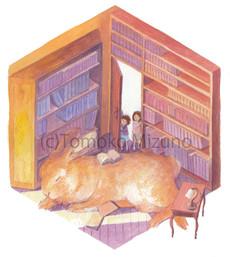 library2-ss.jpg