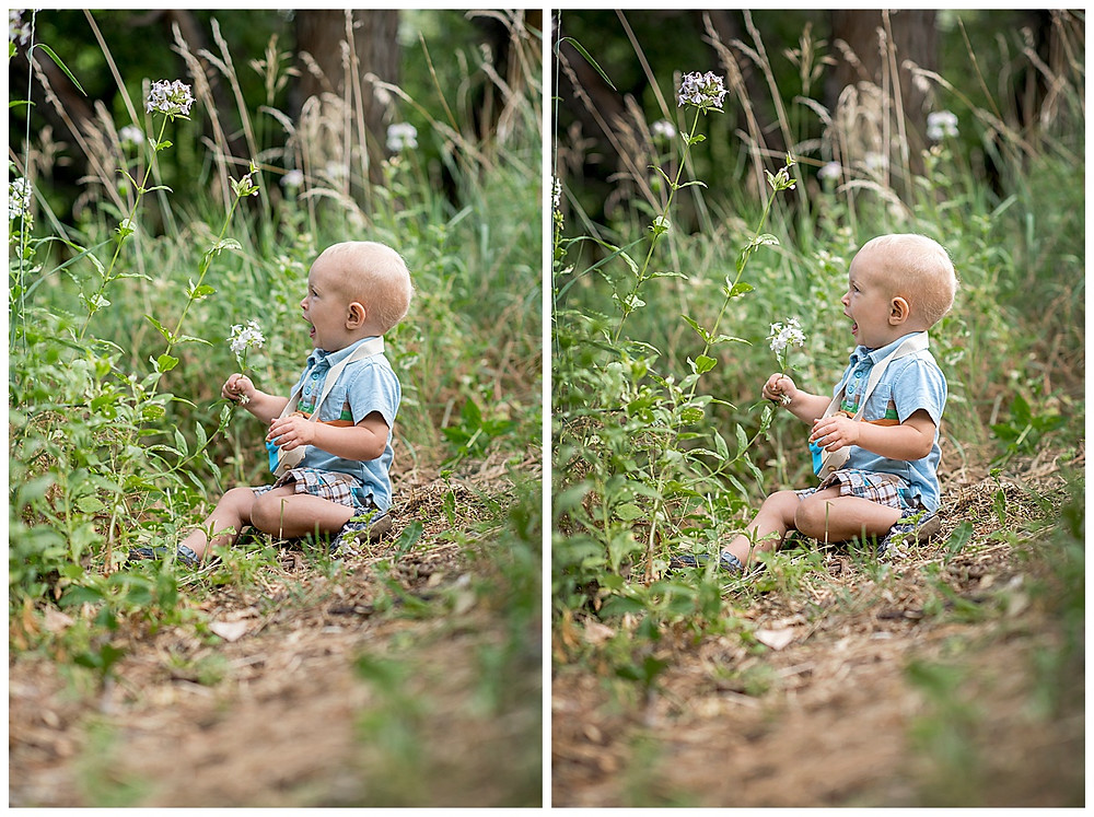 Toddler sitting in grass photo