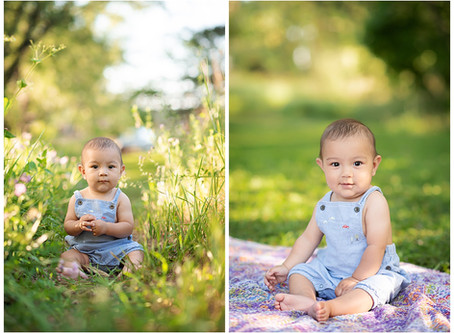 6 Month Baby Photoshoot Ideas Video