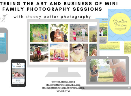 Mastering the Art & Business of Mini Family Photography Sessions - Online Digital Course