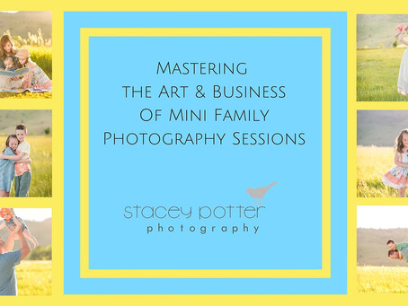 Registration now Open for Mastering the Art and Business of Mini Family Photography Sessions - For p