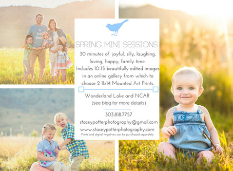 Boulder Spring Mini Family Photography Sessions! - Stacey Potter Photography