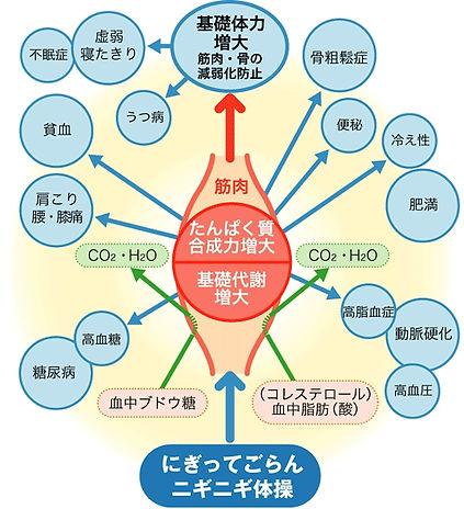 握力強化の図.jpg