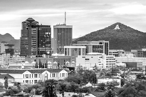 Tucson 2020 (6,499 Parcels)