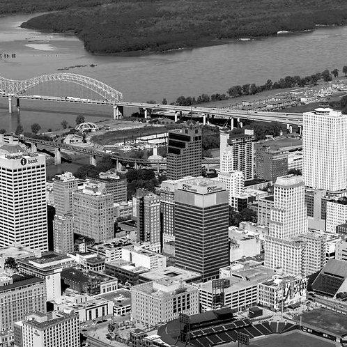 Memphis 2020 (8,910 Parcels)