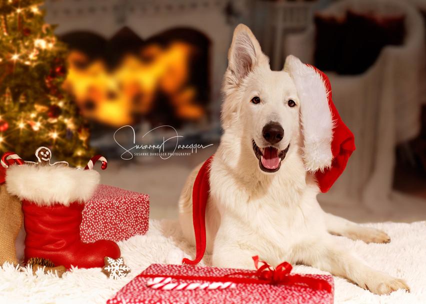 don weihnachtskappe.jpg