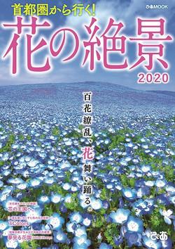 首都圏から行く! 花の絶景2020