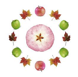 Autumn Orchard 3.jpg