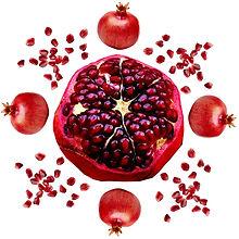 Pomegranate_edited-1.jpg
