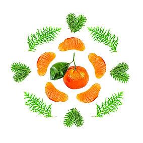 Orange and pine.jpg