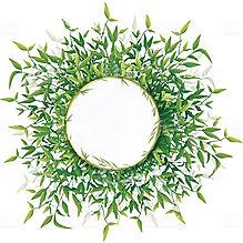Bamboo leaf.jpg