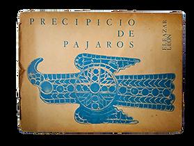 PRECIPICIO DE PAJAROS WEB.png