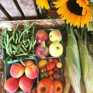 Lots of local produce_