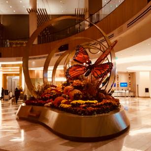 MGM Hotel Washington DC