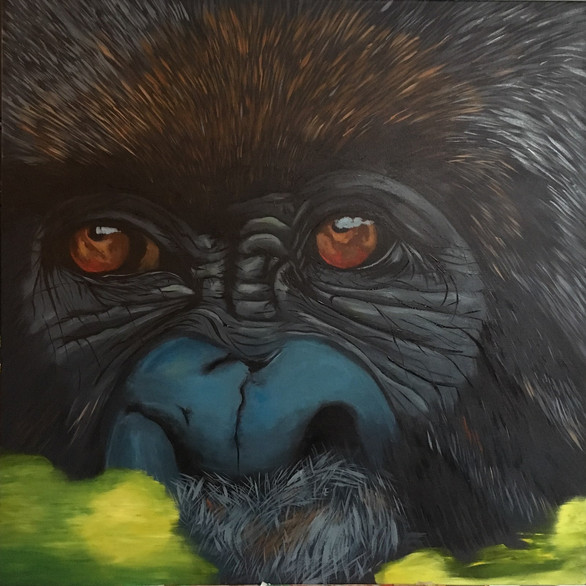 Gorilla Time Fare