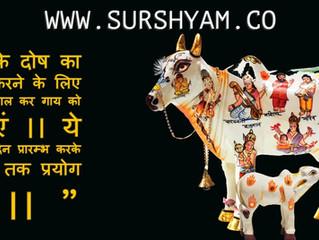 Guru Dosh Nivaran - Sur Shyam Gaushala