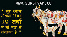 29 Years of Gau Seva - Sur Shyam Gaushala