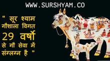 29 Years of Gau Seva - Sur Shyam Gaushala