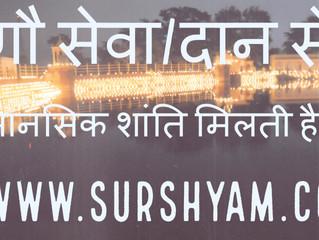 Mental Peace- Gau Seva - Sur Shyam Gaushala