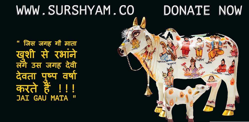 Sur Shyam Gaushala  Benefits of Cow Seva