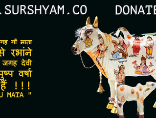 Cow Jaha Hoti hai Vaha Devta Hote Hai - Sur Shyam Gaushala
